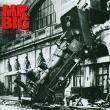 Mr. Big — LEAN INTO IT