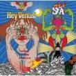 Super Furry Animals — HEY VENUS!