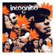 Incognito — BEES   THINGS   FLOWERS