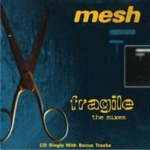 Mesh — Fragile
