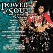 Stevie Ray Vaughan — Jimi Hendrix - The Power of Soul