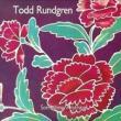 Todd Rundgren — Something/Anything?