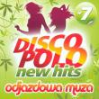 Sisters — Polo Dance Top - Złotowłosa Anna (va)