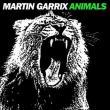Martin Garrix — SP: ANIMALS